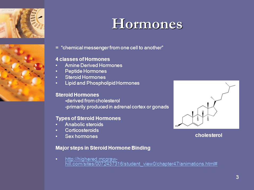 """3 Hormones = """"chemical messenger from one cell to another"""" 4 classes of Hormones Amine Derived Hormones Peptide Hormones Steroid Hormones Lipid and Ph"""