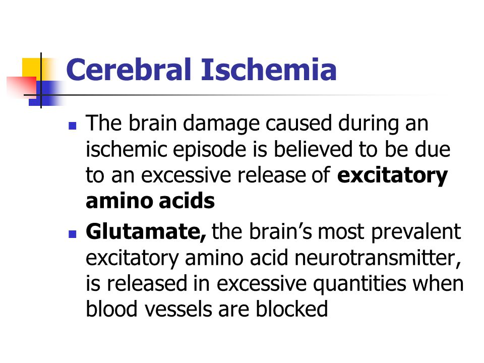 Cerebral Ischemia The brain damage caused during an ischemic episode is believed to be due to an excessive release of excitatory amino acids Glutamate, the brain's most prevalent excitatory amino acid neurotransmitter, is released in excessive quantities when blood vessels are blocked