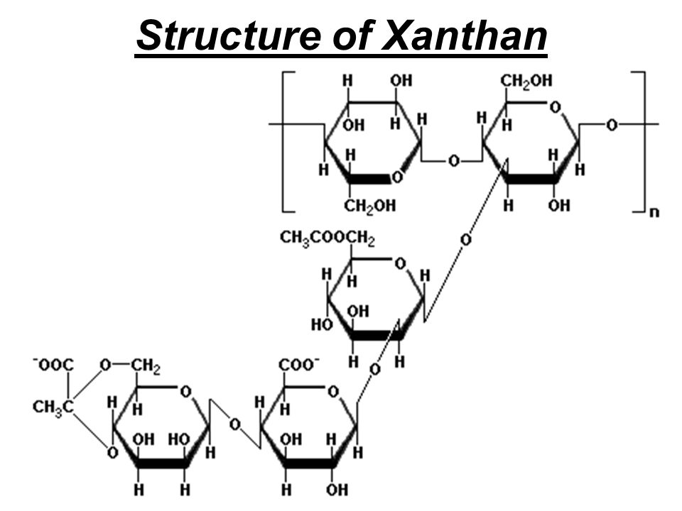 Structure of Xanthan