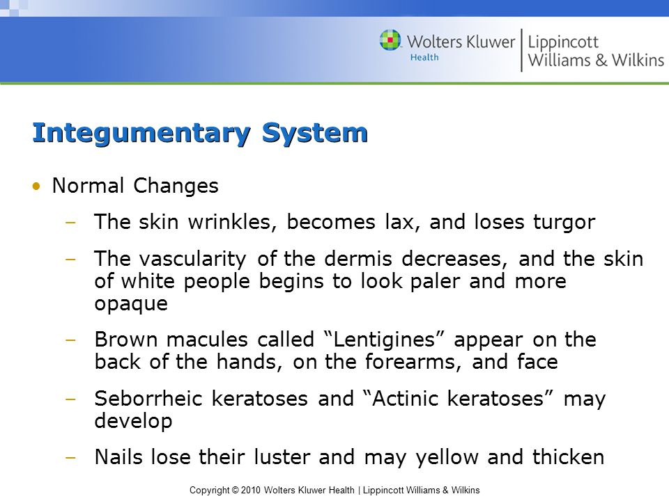 Copyright © 2010 Wolters Kluwer Health | Lippincott Williams & Wilkins Integumentary System Normal Changes –The skin wrinkles, becomes lax, and loses turgor –The vascularity of the dermis decreases, and the skin of white people begins to look paler and more opaque –Brown macules called Lentigines appear on the back of the hands, on the forearms, and face –Seborrheic keratoses and Actinic keratoses may develop –Nails lose their luster and may yellow and thicken