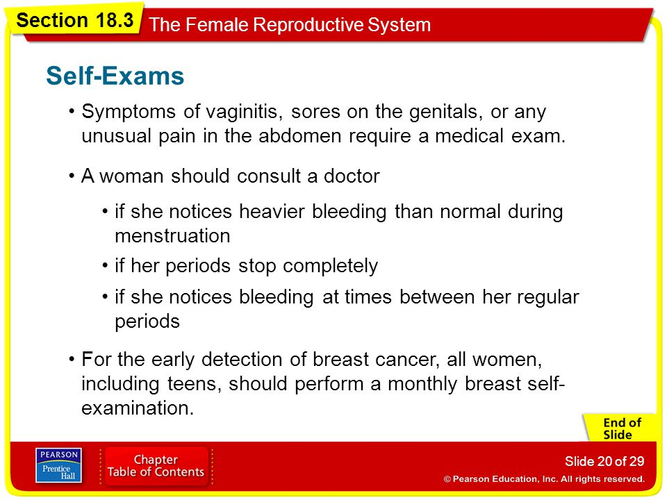 Section 18.3 The Female Reproductive System Slide 20 of 29 Symptoms of vaginitis, sores on the genitals, or any unusual pain in the abdomen require a