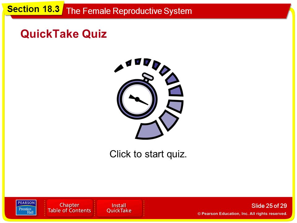 Section 18.3 The Female Reproductive System Slide 25 of 29 QuickTake Quiz Click to start quiz.