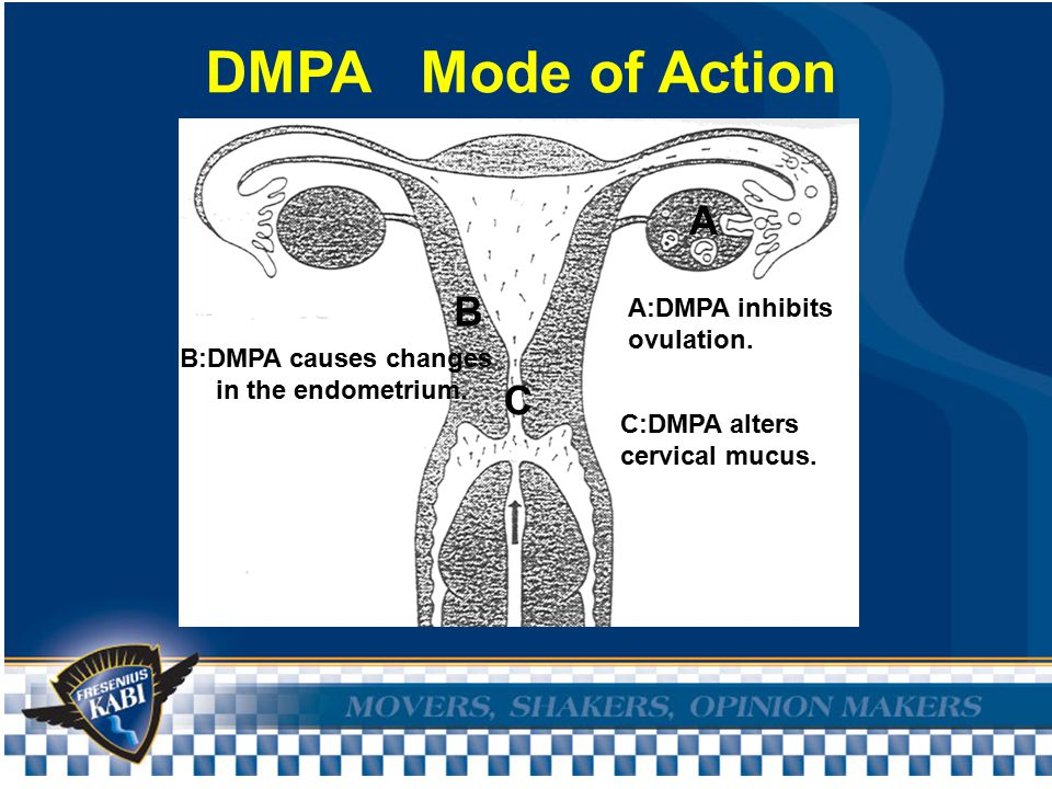 DMPA Mode of Action A:DMPA inhibits ovulation. B:DMPA causes changes in the endometrium.