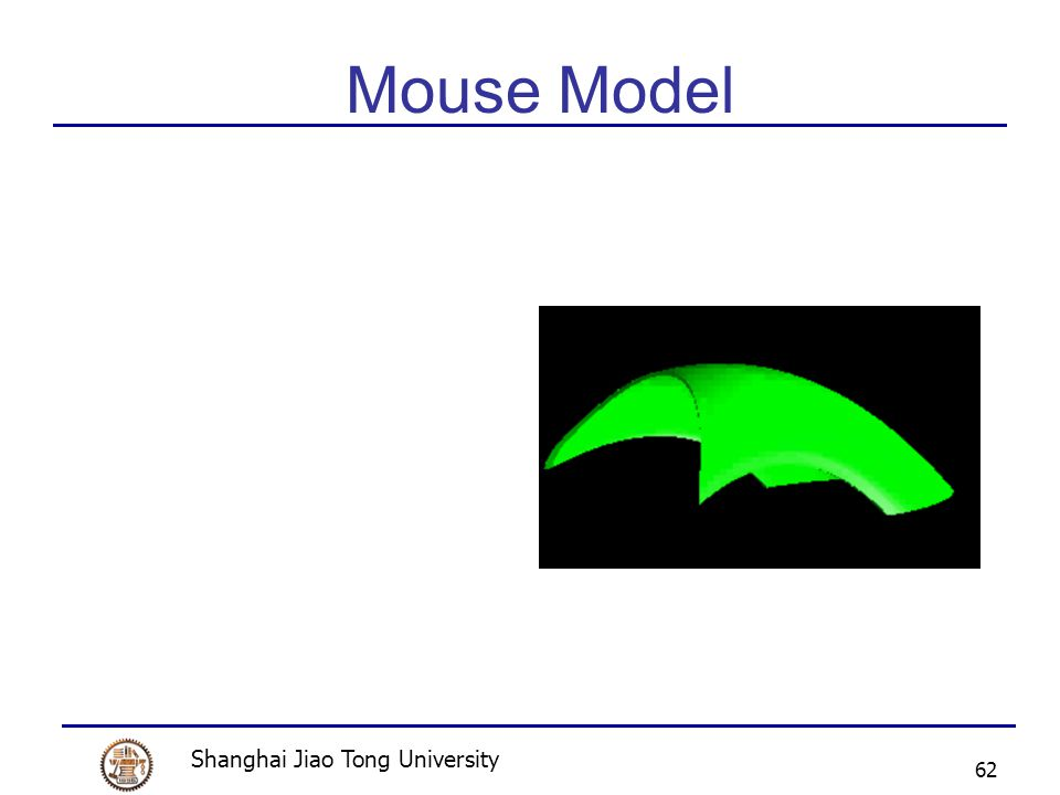 Shanghai Jiao Tong University 62 Mouse Model