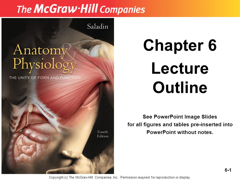 6-1 Chapter 6 Lecture Outline See PowerPoint Image Slides for all figures and tables pre-inserted into PowerPoint without notes.