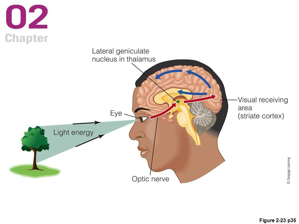 Figure 2-23 p35