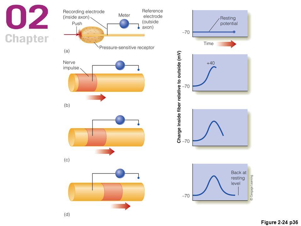Figure 2-24 p36