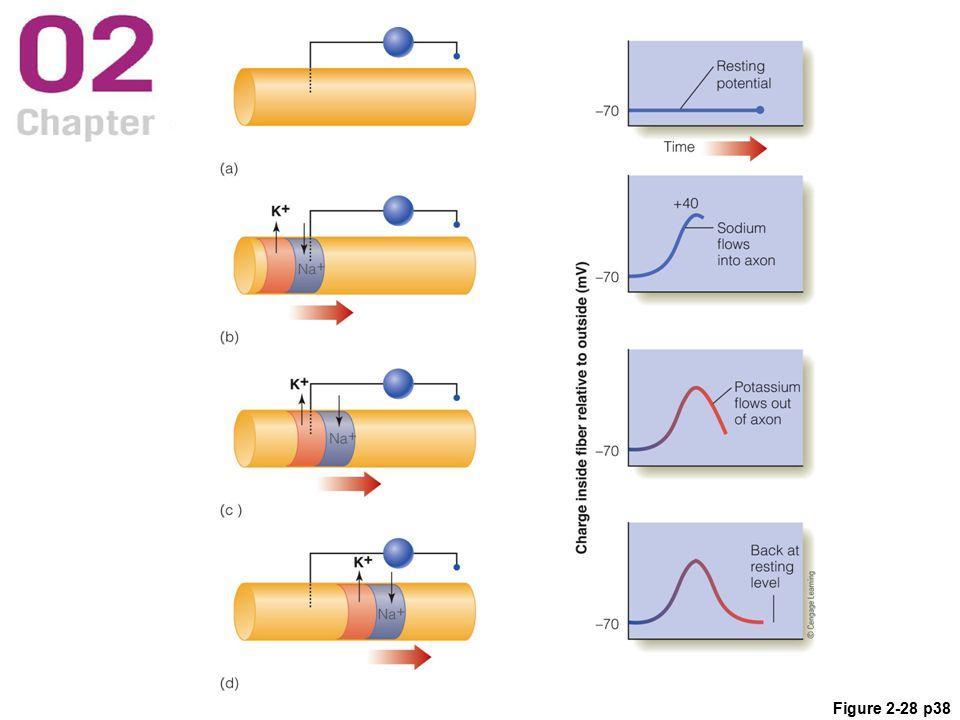 Figure 2-28 p38