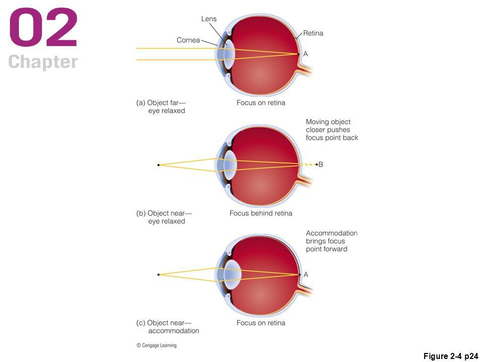 Figure 2-4 p24