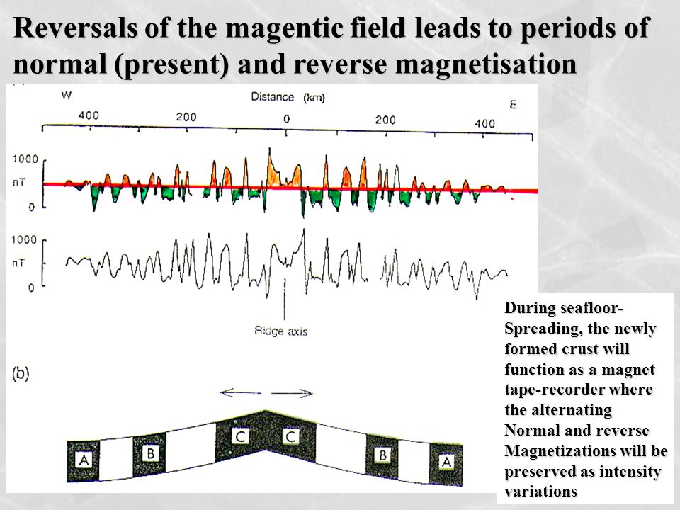 Reversals of the magentic field leads to periods of normal (present) and reverse magnetisation During seafloor- Spreading, the newly formed crust will