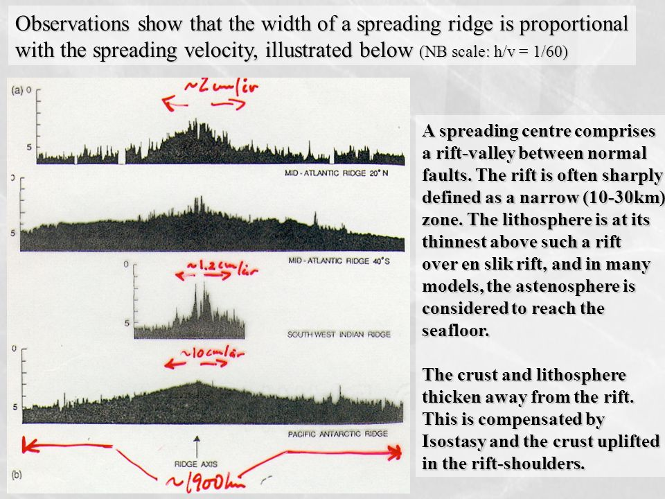 Observations show that the width of a spreading ridge is proportional with the spreading velocity, illustrated below (NB scale: h/v = 1/60) A spreading centre comprises a rift-valley between normal faults.