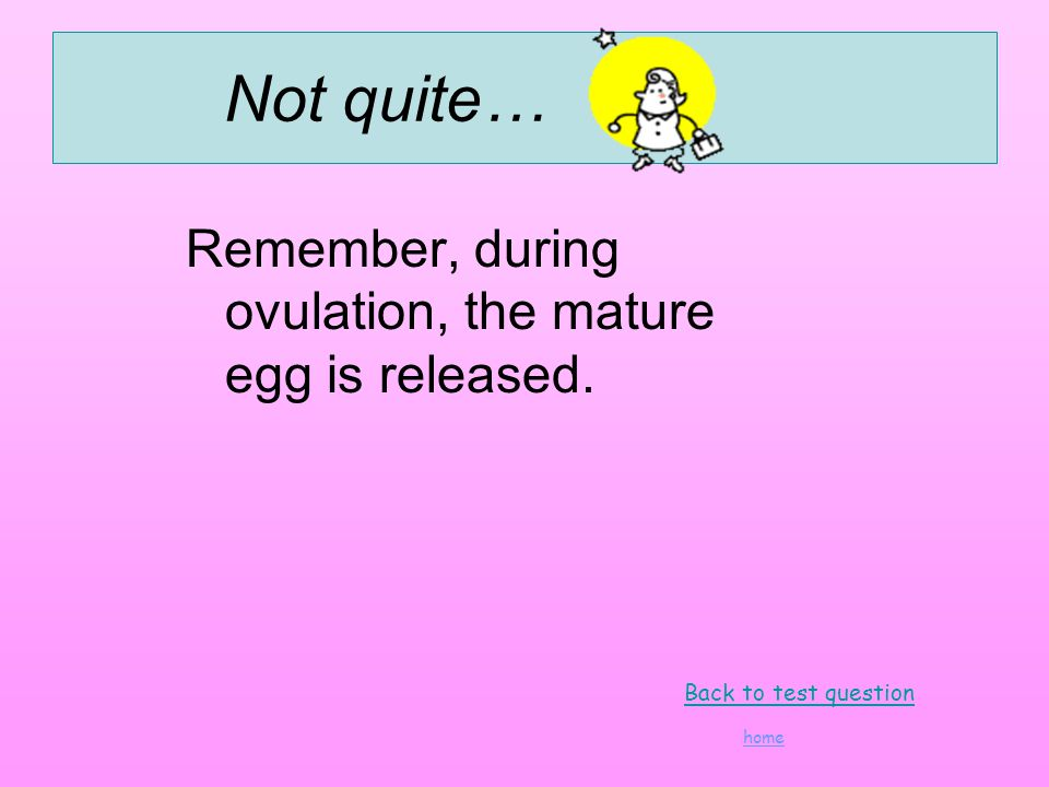 Not quite… Remember, during ovulation, the mature egg is released. Back to test question home