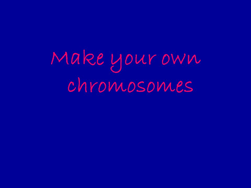 Make your own chromosomes