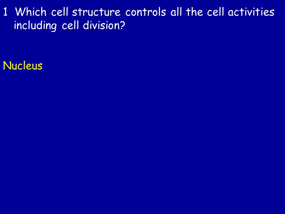 1 Which cell structure controls all the cell activities including cell division Nucleus