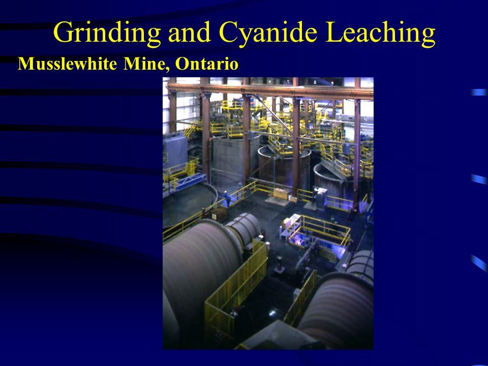 Grinding and Cyanide Leaching Musslewhite Mine, Ontario