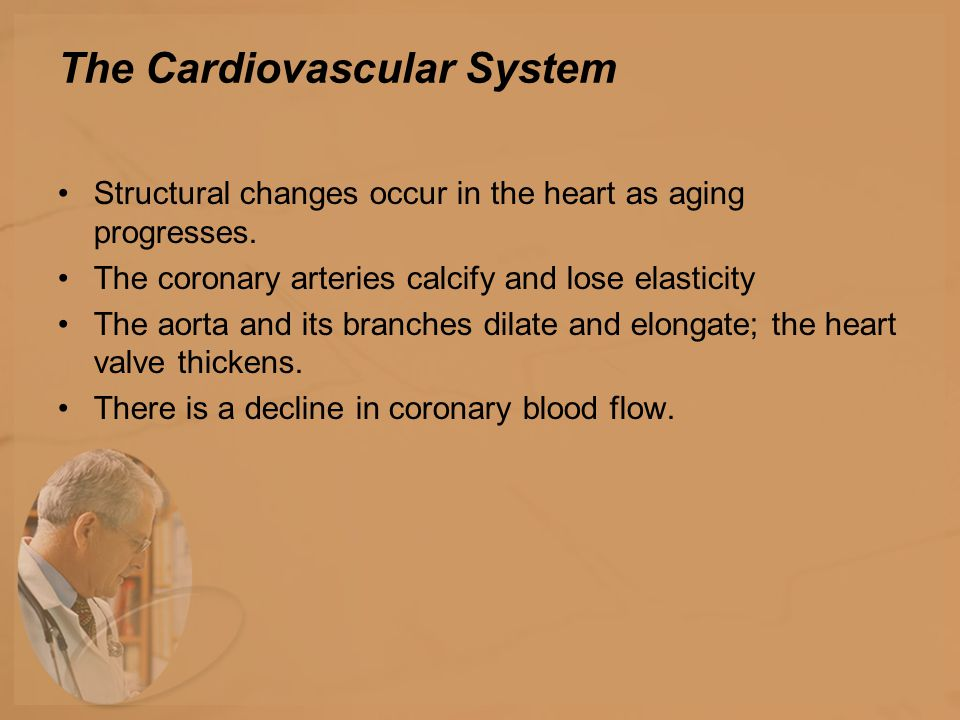 The Cardiovascular System Structural changes occur in the heart as aging progresses.