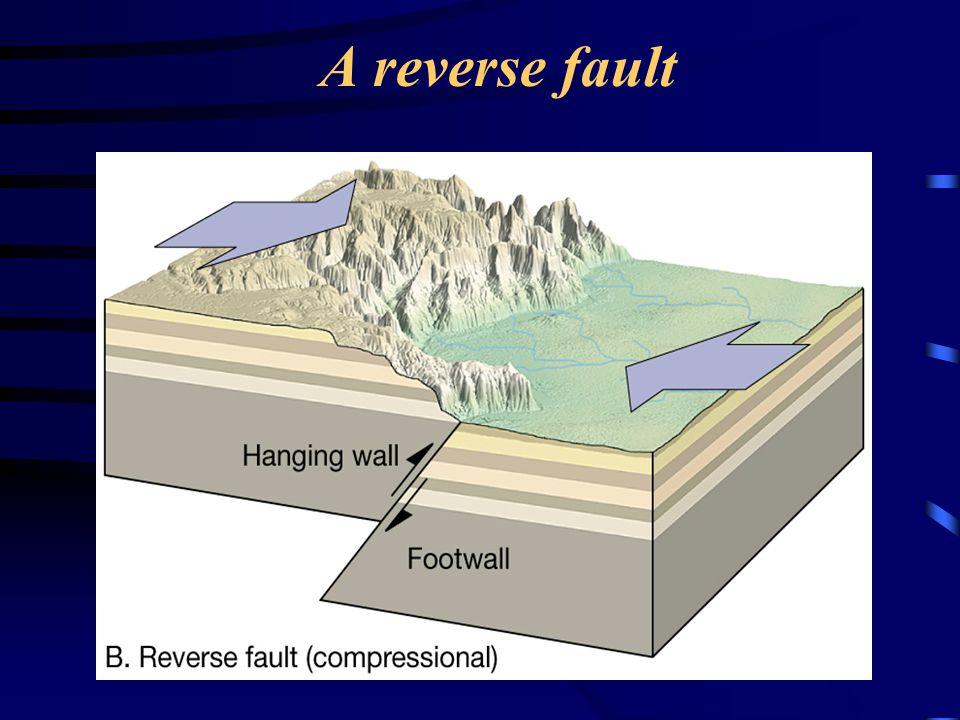 A reverse fault