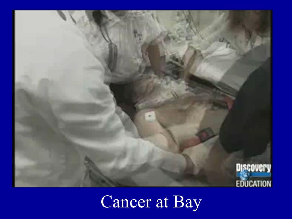 Cancer at Bay