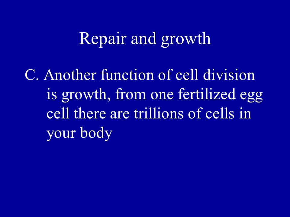 Mitosis Interphase – The cell is making molecules and organelles and has duplicated its DNA Prophase – The chromatin fibers have condensed into chromosomes and pair up with their sister chromatids.