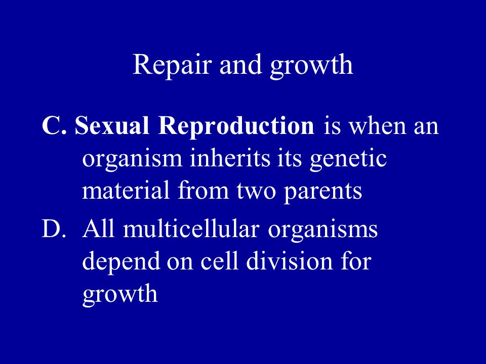 III.The Process of Meiosis A.