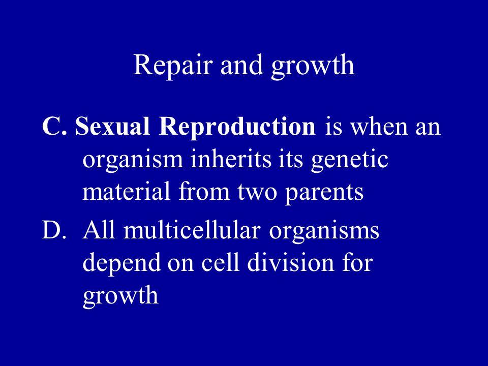 I.Assortment of Chromosomes A.