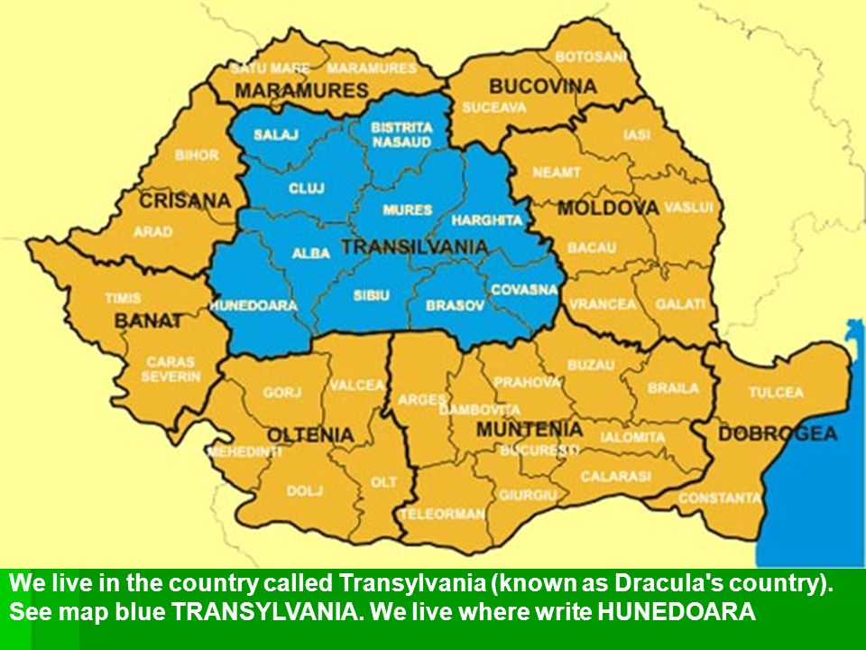 We live in the country called Transylvania (known as Dracula's country). See map blue TRANSYLVANIA. We live where write HUNEDOARA