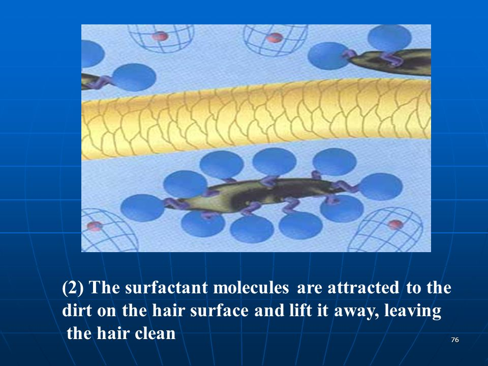 76 (2) The surfactant molecules are attracted to the dirt on the hair surface and lift it away, leaving the hair clean