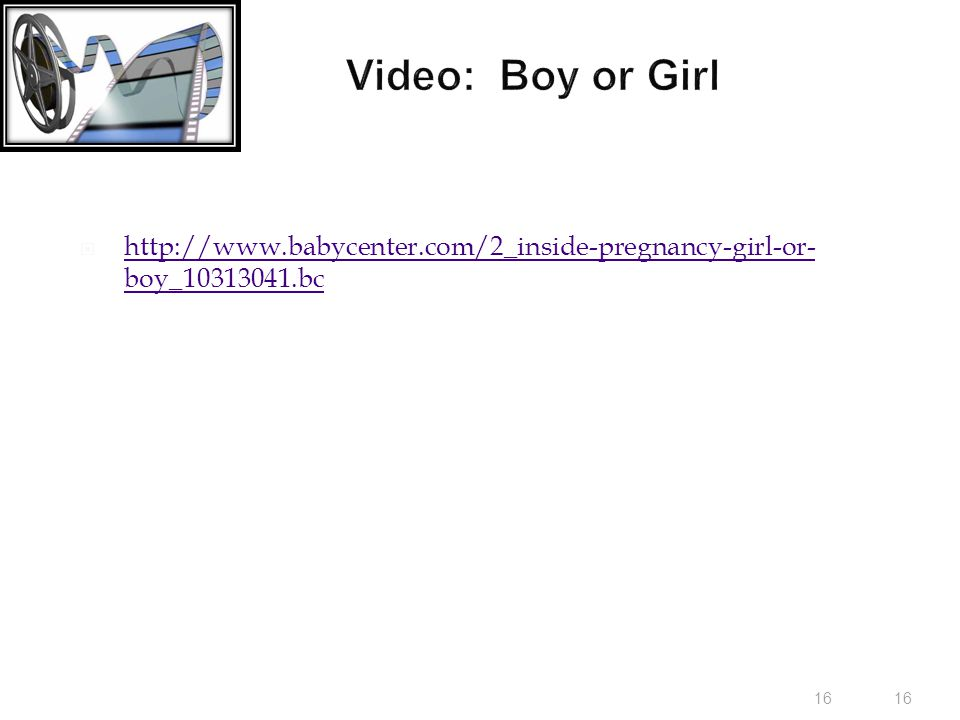 16 Video: Boy or Girl  http://www.babycenter.com/2_inside-pregnancy-girl-or- boy_10313041.bc http://www.babycenter.com/2_inside-pregnancy-girl-or- boy_10313041.bc