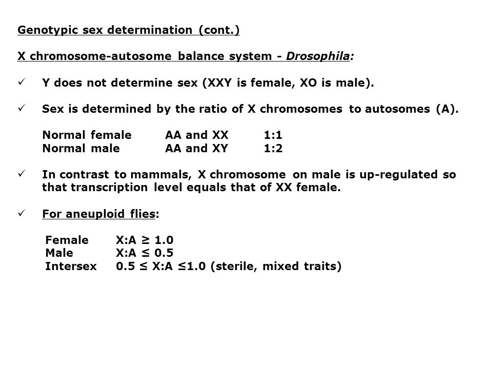 Genotypic sex determination (cont.) X chromosome-autosome balance system - Drosophila: Y does not determine sex (XXY is female, XO is male).
