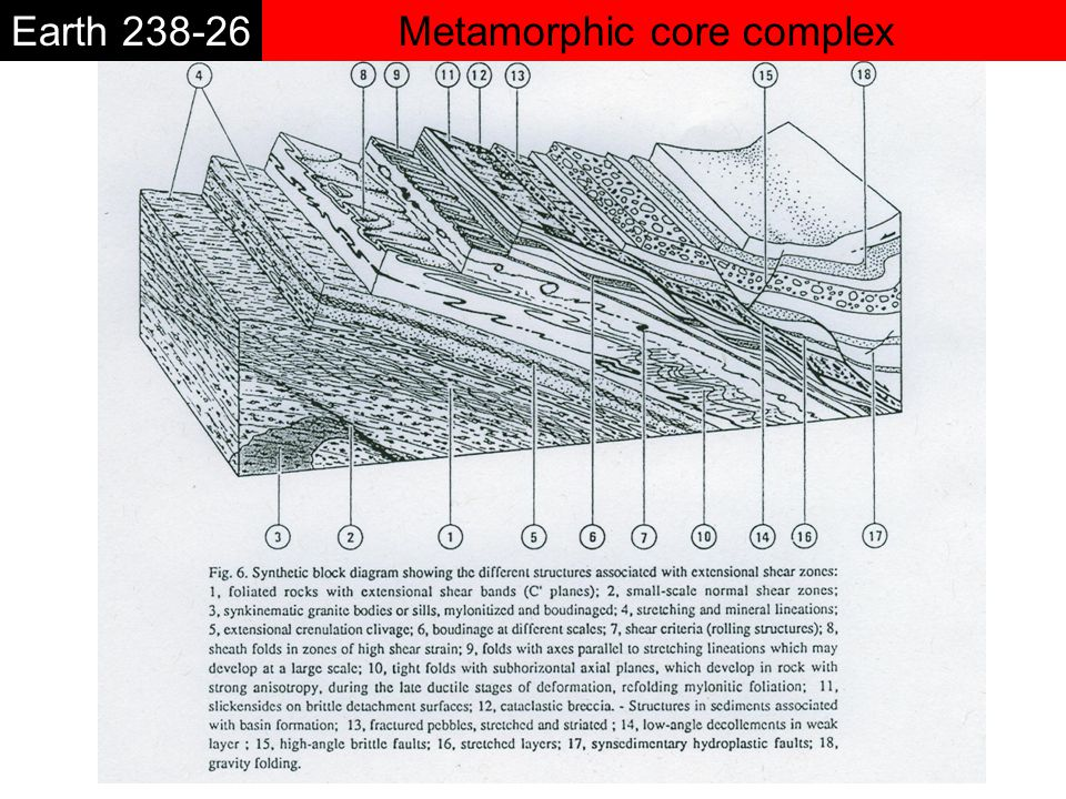 Metamorphic core complexEarth 238-26 *Remain a question: is a low angle detachment necessary at the beginning of the crustal thinning .