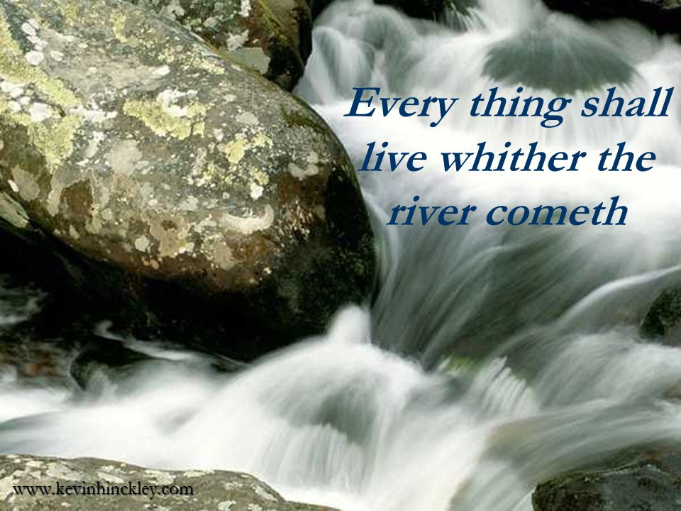 Every thing shall live whither the river cometh www.kevinhinckley.com