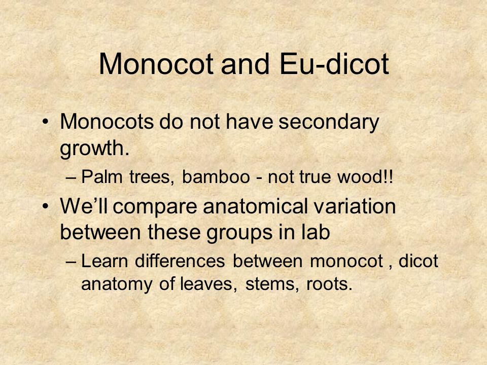 Monocot and Eu-dicot Monocots do not have secondary growth.