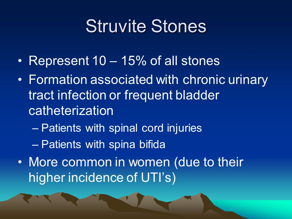 Struvite Stones Represent 10 – 15% of all stones Formation associated with chronic urinary tract infection or frequent bladder catheterization –Patien