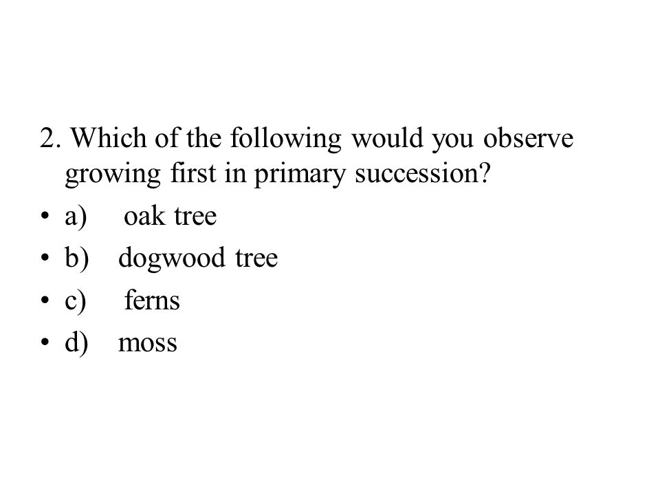 2. Which of the following would you observe growing first in primary succession.