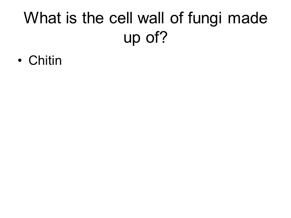 What is the cell wall of fungi made up of? Chitin