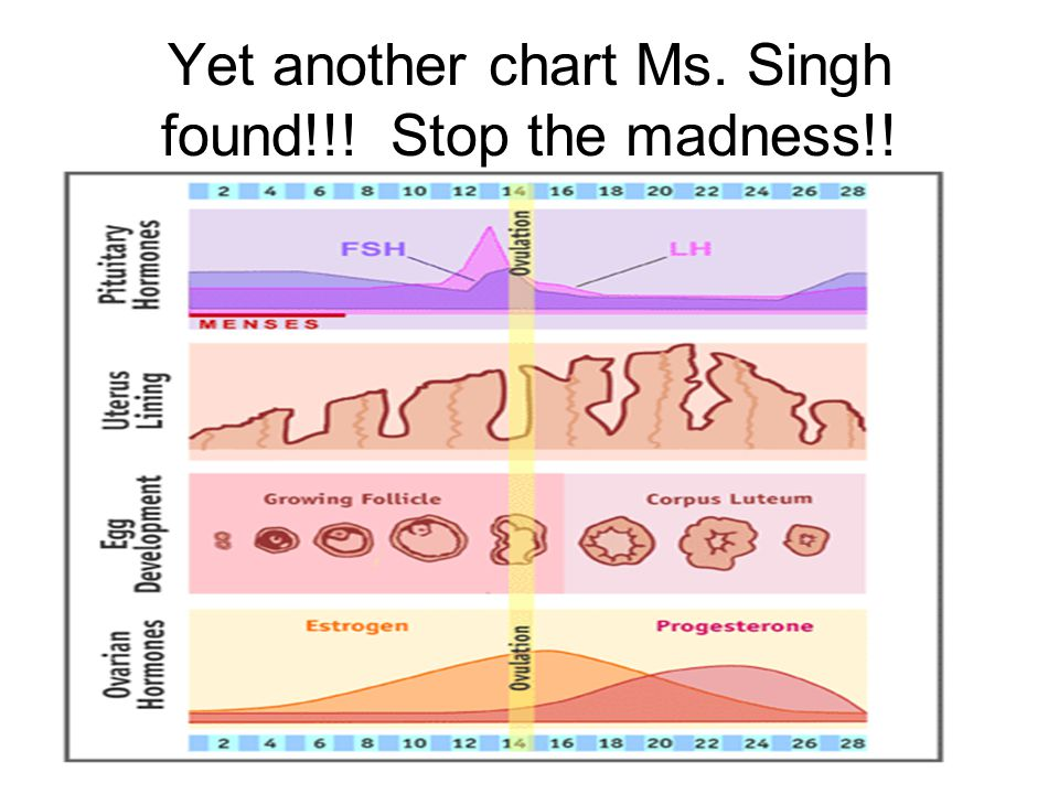 Yet another chart Ms. Singh found!!! Stop the madness!!