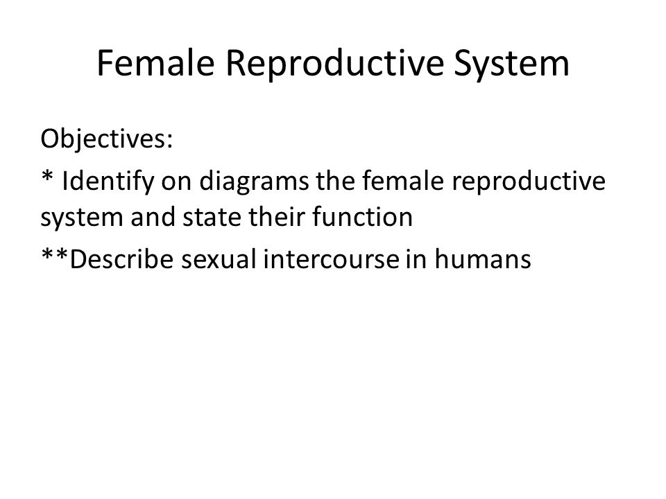 Female Reproductive System Objectives: * Identify on diagrams the female reproductive system and state their function **Describe sexual intercourse in