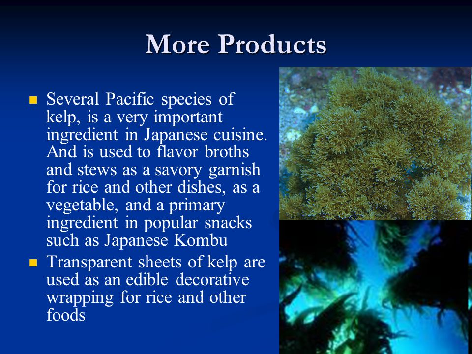 More Products Several Pacific species of kelp, is a very important ingredient in Japanese cuisine.