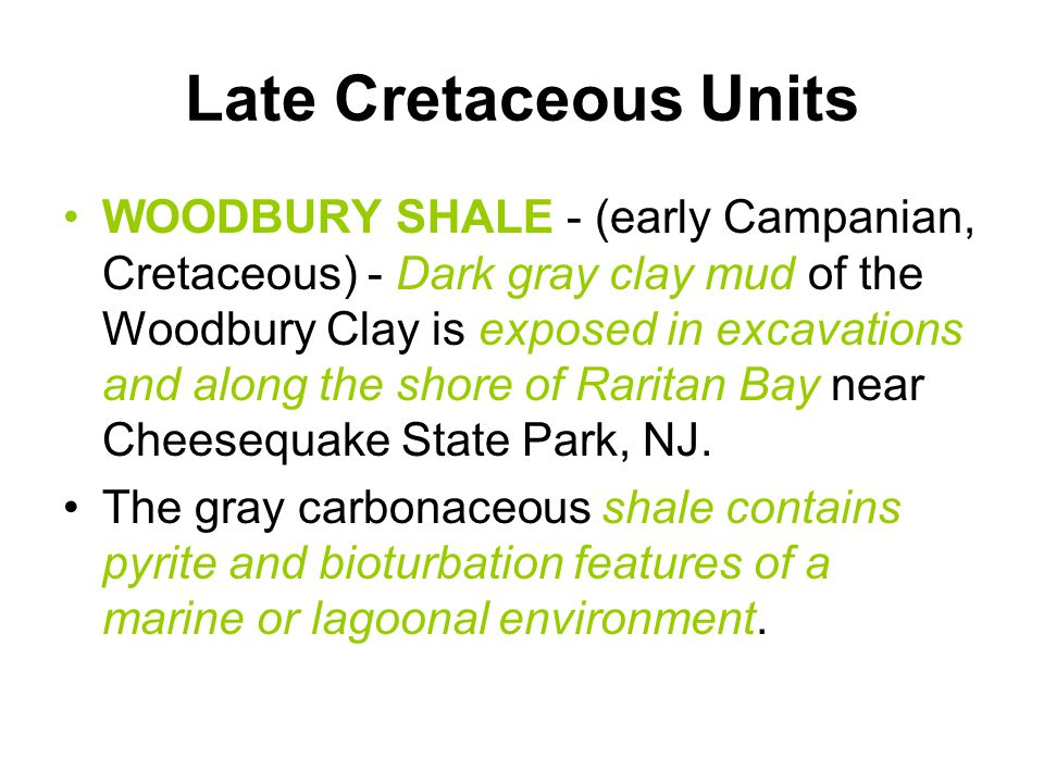 Late Cretaceous Units WOODBURY SHALE - (early Campanian, Cretaceous) - Dark gray clay mud of the Woodbury Clay is exposed in excavations and along the