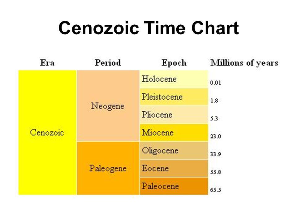 Cenozoic Time Chart