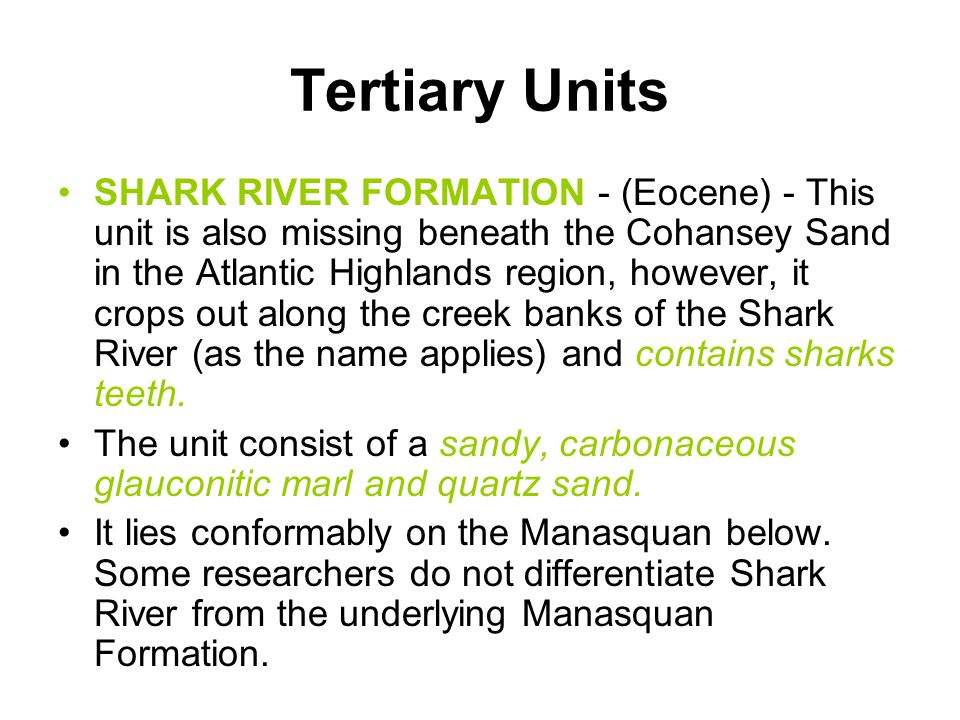 Tertiary Units SHARK RIVER FORMATION - (Eocene) - This unit is also missing beneath the Cohansey Sand in the Atlantic Highlands region, however, it cr
