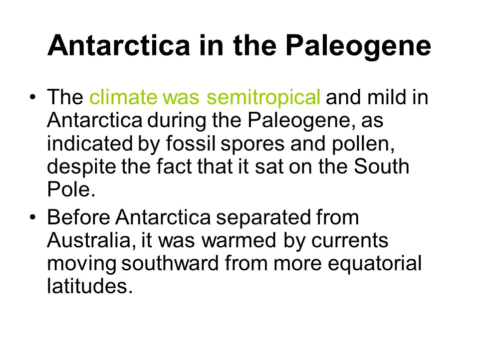 Antarctica in the Paleogene The climate was semitropical and mild in Antarctica during the Paleogene, as indicated by fossil spores and pollen, despit