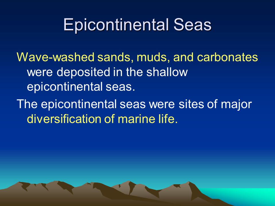 Epicontinental Seas Wave-washed sands, muds, and carbonates were deposited in the shallow epicontinental seas. The epicontinental seas were sites of m