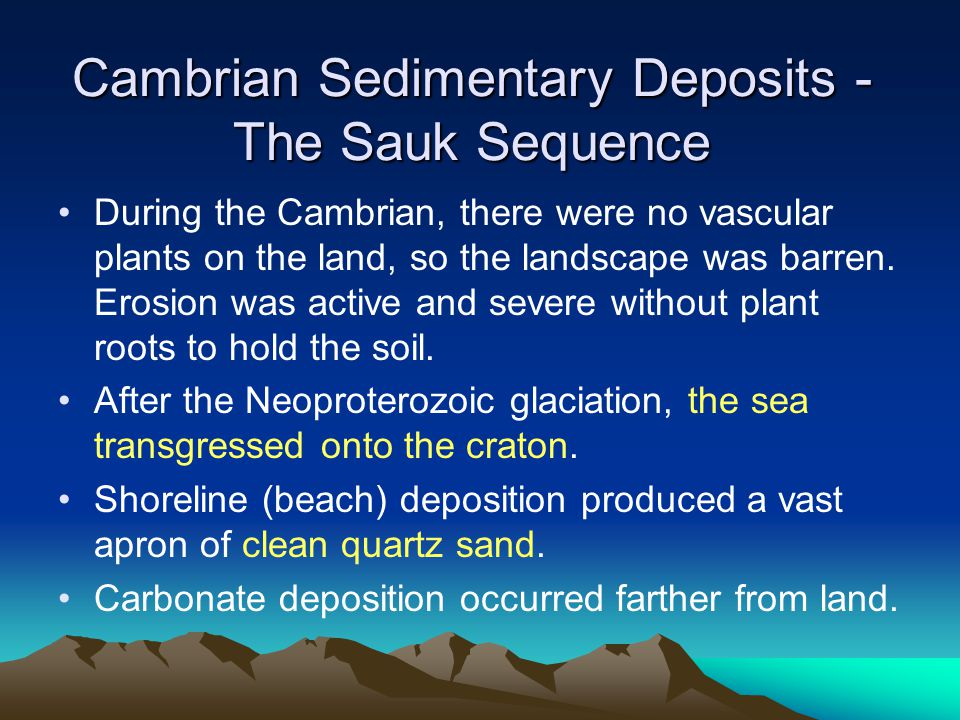 Cambrian Sedimentary Deposits - The Sauk Sequence During the Cambrian, there were no vascular plants on the land, so the landscape was barren. Erosion