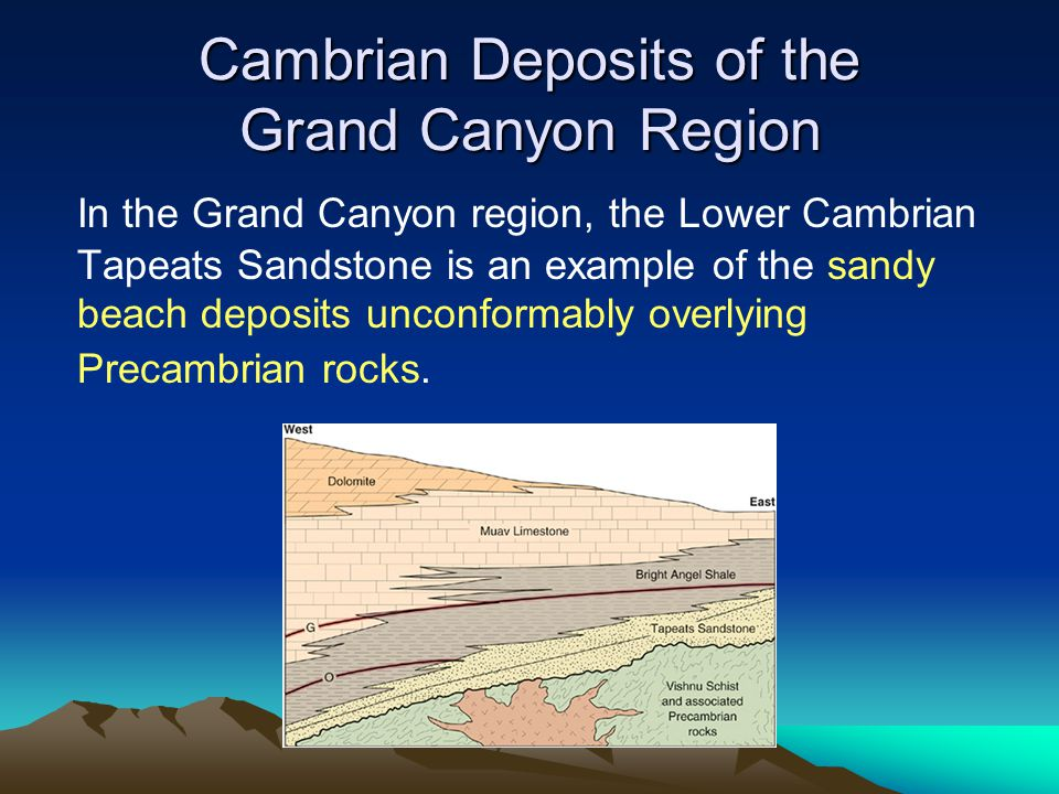 Cambrian Deposits of the Grand Canyon Region In the Grand Canyon region, the Lower Cambrian Tapeats Sandstone is an example of the sandy beach deposit