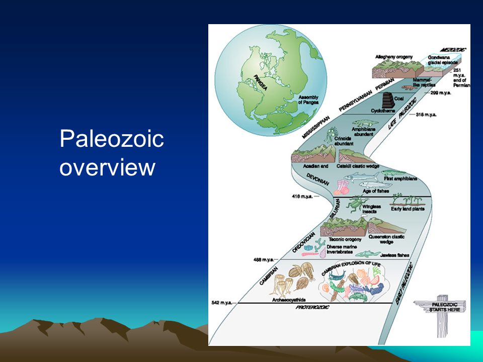 Paleozoic overview