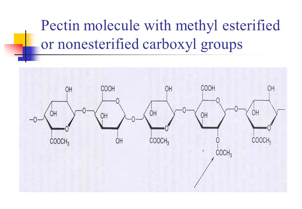 Pectin molecule with methyl esterified or nonesterified carboxyl groups