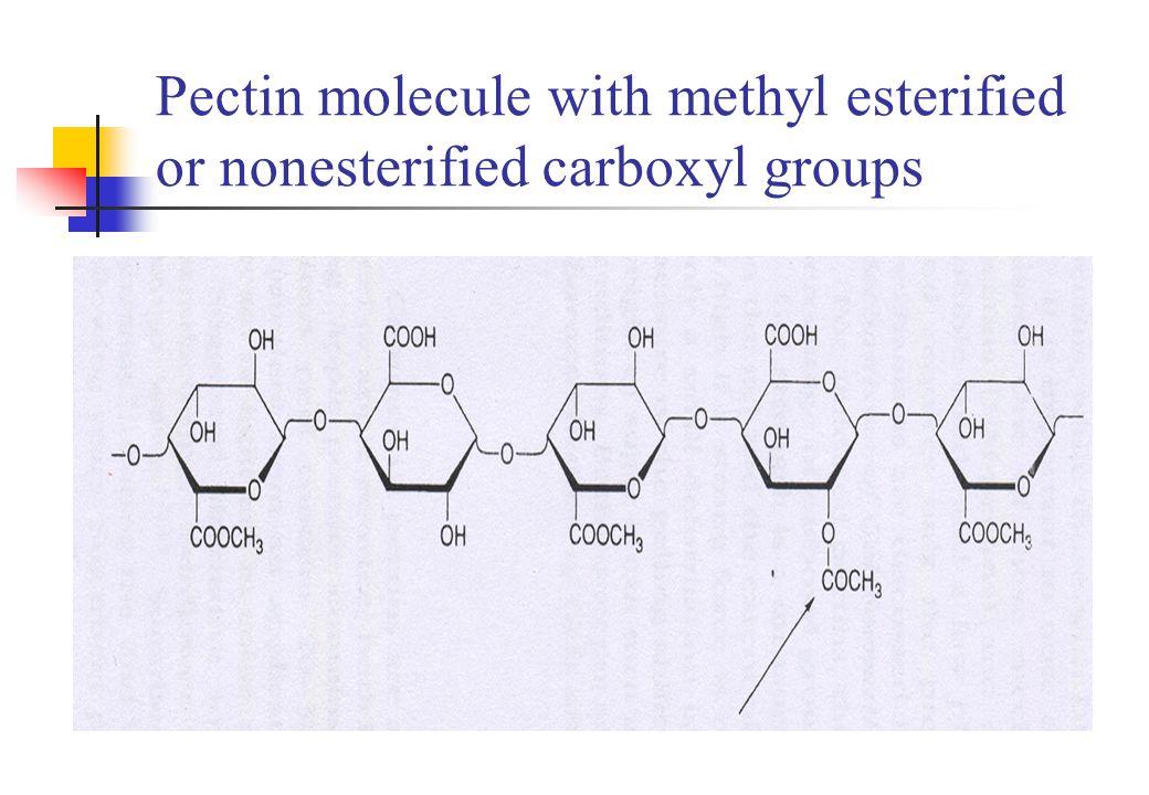 Analysis of pectins Average molecular weight Intrinsic viscosity method Membrane osmometry LC method