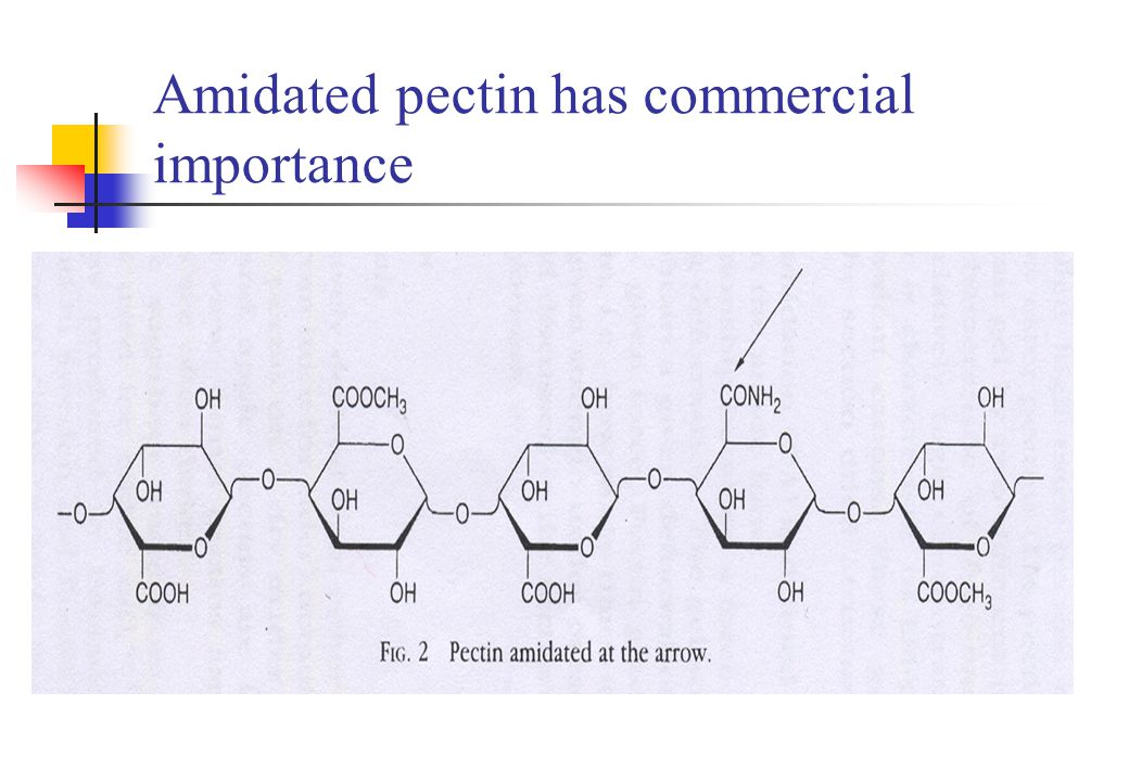 1-3-3 Factors affecting gelation Temperature Concentration of pectin pH Concentration of cosolutes Concentration of ions Molecular weight Degree of esterification Degree of amidation Presence of acetyl groups Heterogeneity and presence of neutral sugar residues