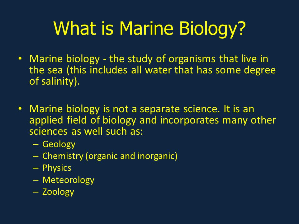 What is Marine Biology.